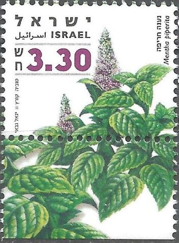 File:Israel 2006 Medicinal Herbs and Spices c.jpg