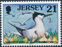 Jersey 1998 Seabirds and waders (2nd Issue) c