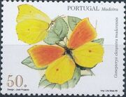Madeira 1998 Insects from Madeira Island (2nd Issue) a
