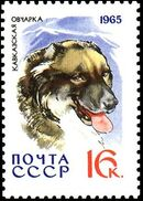 Soviet Union (USSR) 1965 Hunting and Service Dogs j