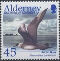 Alderney 2003 Migrating Birds Part 2 Seabirds e.jpg