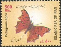 Iran 2003 Butterflies e