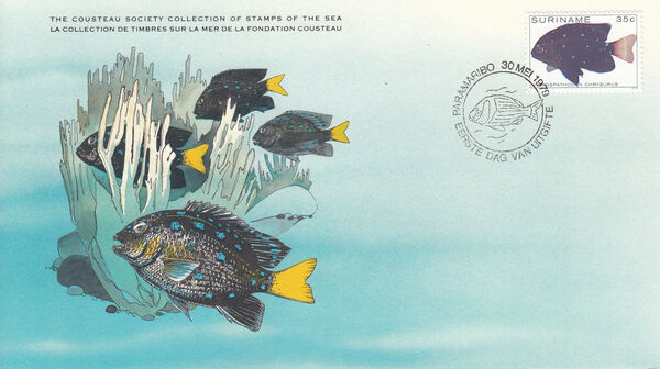 Surinam 1979 Tropical Fishes FDCe