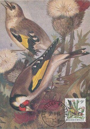 Belgium 1985 Birds MCb