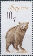 Albania 1965 Brown Bear a