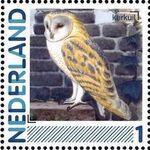 Netherlands 2011 Birds in Netherlands a29