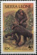 Sierra Leone 1983 WWF - Chimpanzees from Outamba-Kilimi National Park b
