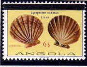 Angola 1981 Sea Shells Overprinted h