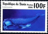 Benin 1996 Marine Mammals d