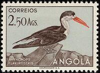 Angola 1951 Birds from Angola i