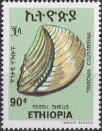 Ethiopia 1977 Fossil Shells e