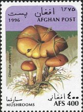 Afghanistan 1996 Mushrooms c