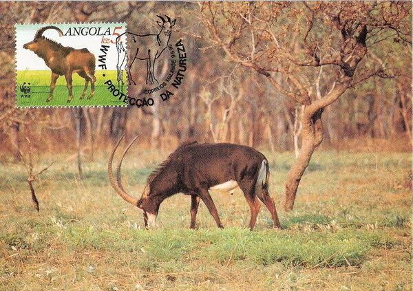 Angola 1990 WWF - Giant Sable Antelope MCa