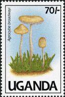 Uganda 1991 Mushrooms of Uganda b