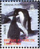 British Antarctic Territory 2006 Penguins of the Antarctic k
