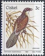 Ciskei 1981 Definitive - Birds c