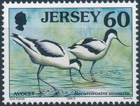 Jersey 1998 Seabirds and waders (2nd Issue) g