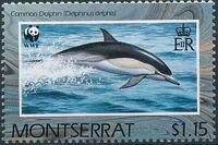 Montserrat 1990 WWF Dolphins b