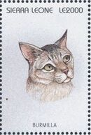 Sierra Leone 1996 Cats of the World zd