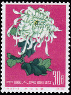 China (People's Republic) 1960 Chrysanthemums (1st Group) d