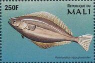 Mali 1997 Marine Life w