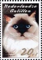 Netherlands Antilles 2003 Cats b
