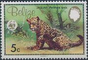 Belize 1983 WWF - Jaguar a