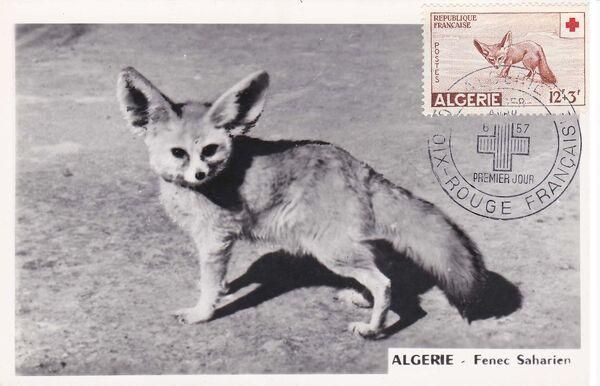 Algeria 1957 Red Cross MCe