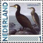 Netherlands 2011 Birds in Netherlands a1