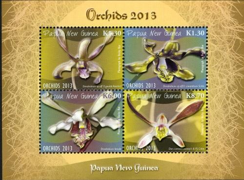 Papua New Guinea 2013 Orchids j