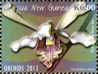 Papua New Guinea 2013 Orchids h