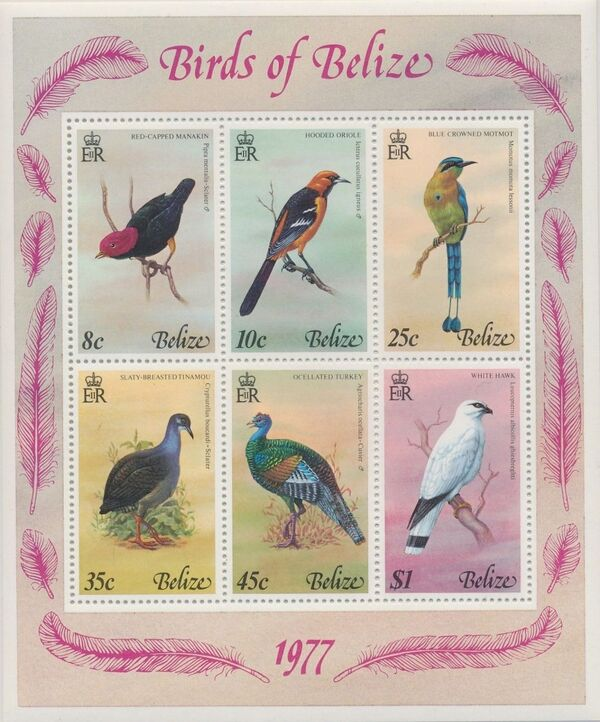 Belize 1977 Birds of Belize (1st Issue) k