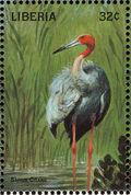 Liberia 1998 Birds of the World j
