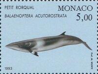 Monaco 1993 Musée Océanographique - Cétacés de la Méditerranée (2nd Group) b