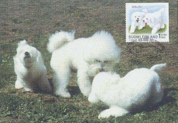 Finland 1998 Puppies MCb