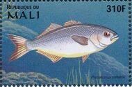Mali 1997 Marine Life zi