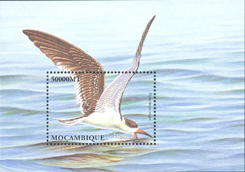 Mozambique 2002 Sea Birds of the World p