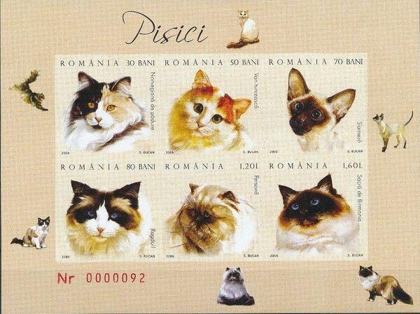 Romania 2006 Cats h