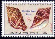 Angola 1974 Sea Shells i