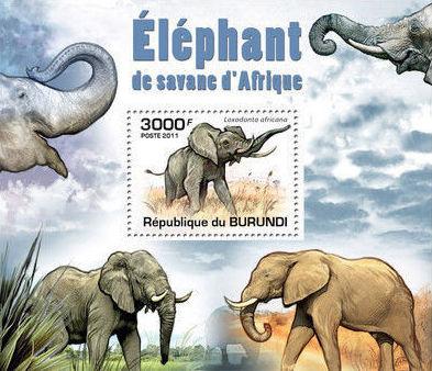 Burundi 2011 Elephants of the African Savanna SSe