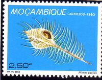 Mozambique 1980 Stamp Day - Maritime Shells of Mozambique c