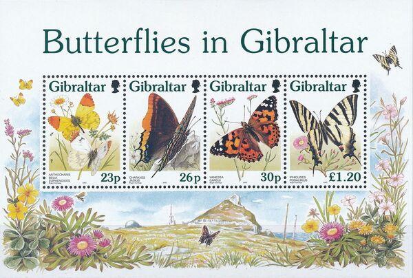 Gibraltar 1997 Butterflies in Gibraltar k