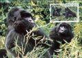 Rwanda 1985 WWF Mountain Gorilla j.jpg