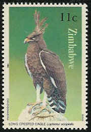Zimbabwe 1984 Birds of prey b