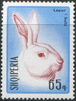 Albania 1967 Hares and Rabbits g