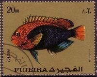 Fujeira 1972 Exotic Fishes b