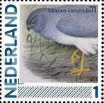 Netherlands 2011 Birds in Netherlands a3