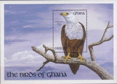 Ghana 1991 The Birds of Ghana w6