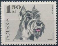 Poland 1969 Dogs d
