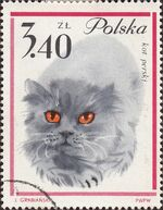 Poland 1964 European Cats i